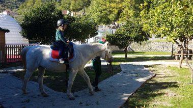 natale-giuele_pony